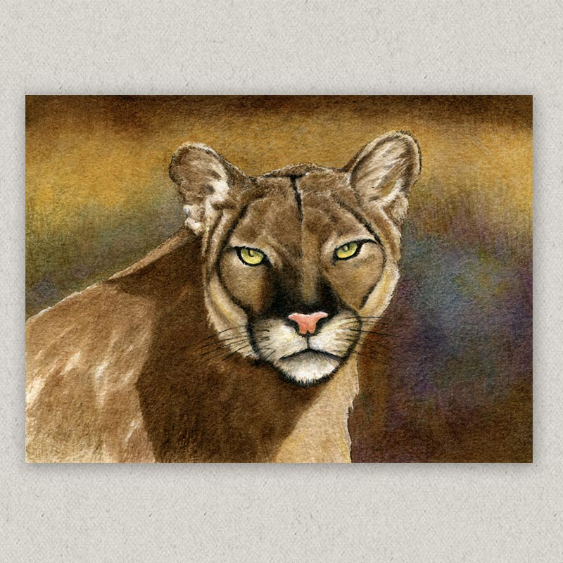 cougar emerald eyes